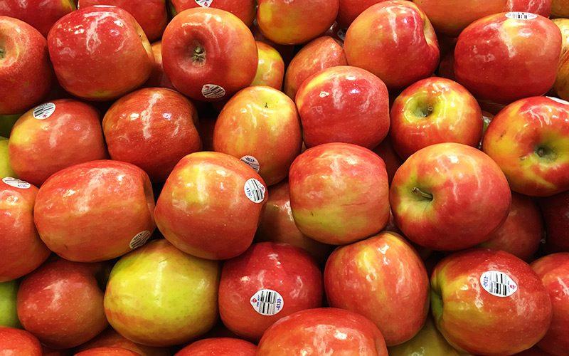 A inovação no setor hortofrutícola
