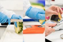 Segurança Alimentar: Como garantir a qualidade dos seus produtos